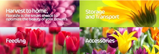 FLORALIFE SMITHERS OASIS ENGINEERED PRODUCTS